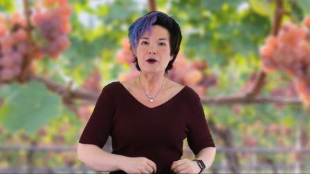 葡萄酒之旅 意大利的基安蒂产区Chianti