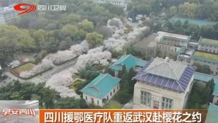 四川援鄂医疗队重返武汉赴樱花之约