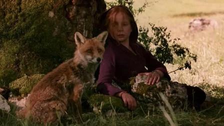 女孩为了保护狐狸,竟赶走了狼群