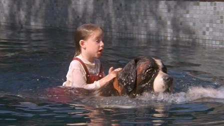 女孩收养流浪狗,危险时刻,狗狗救了她