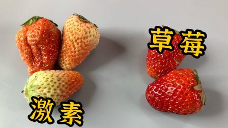 """远离""""毒""""草莓,看这4点就知道,学会记得告诉您的家人和朋友"""