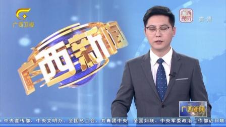 广西:加快西部陆海新通道重大项目建设