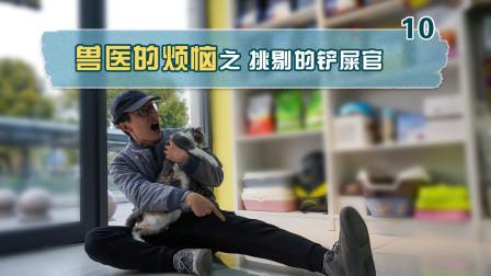兽医小明宠物医院VLOG 铲屎官去宠物医院买东西,太挑剔了