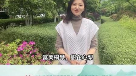 一方水土、一只蜜梨、一种生活。4月17日上午9点,武义县第九届桐琴蜜梨文化节,让我们一起走进人杰地灵的桐琴
