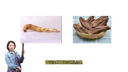 阿拉善肉苁蓉一斤多少钱?肉苁蓉和管花肉苁蓉怎么辨别?艳滋堂