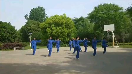 南京市栖霞区城市绿洲太极队晨练新编28式太极拳