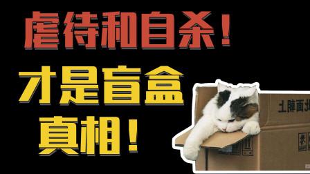 别旁观了,我们就是宠物盲盒里的那个小动物!