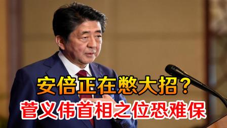 日本传出重要风声,安倍正在憋大招?菅义伟急了,首相之位恐难保