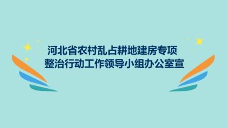 """农村乱占耕地建房""""八不准""""系列动漫2"""