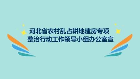 """农村乱占耕地建房""""八不准""""系列动漫"""