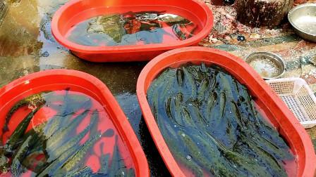 """湖北省""""鱼米之乡""""监利县,到当地最大市场一看,这种是什么鱼?"""