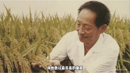 电影袁隆平创湖南卫视收视新高,袁老曾梦到自己在稻穗下乘凉