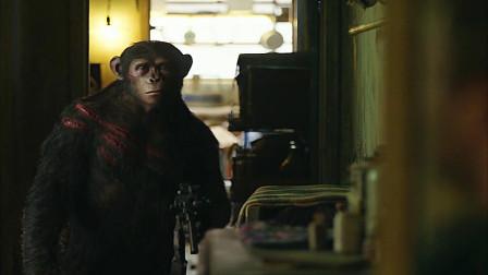 另一个世界,猩猩不光会说话,比人更像人