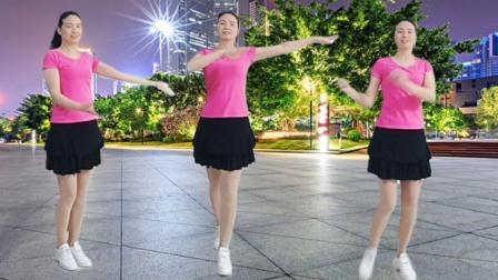 梅月广场舞《等到花儿开》dj32步