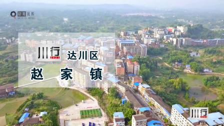 这里的柑橘很出名,这里是达川区赵家镇