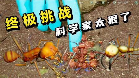 蚂蚁帝国:终极挑战,科学家太狠了!