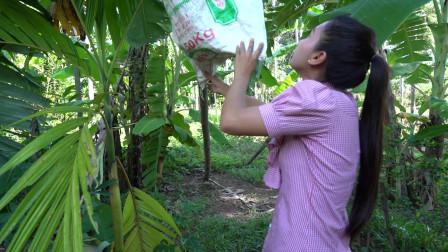 家乡美食 传统香蕉糯米高棉蛋糕