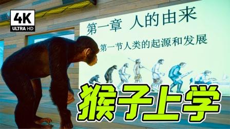 动物园之星:让猴学习,很难吗?我实现了!