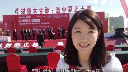 小薇Vlog:相逢六月时,樱桃红满枝!