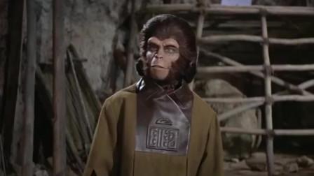 2000年后的人猿星球,人猿找到古文物,是一只洋娃娃