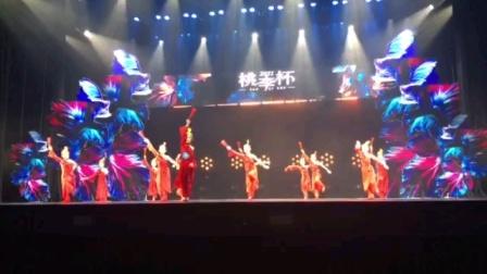 桃李杯舞蹈比赛《少年志》