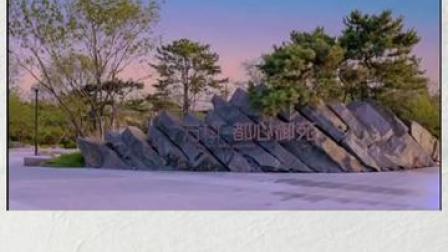 #沈阳有个同款奈良公园  遛娃、约会的绝佳选择!快去盘他。#沈阳针不戳