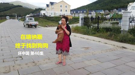 房车环游中国 喝完出发 第46集 历经3小时找到狗狗 带着愉快的心情奔向克拉玛依世界魔鬼城