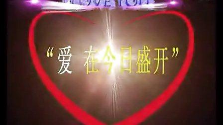 河南电视台十一大型集体婚礼(仇威配音)