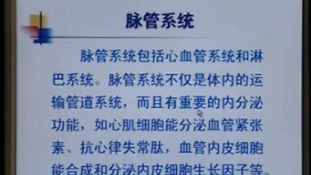 中国医科大学系统解剖学精品课程教学视频 20(免费)