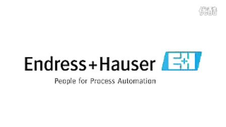 About Endress+Hauser Group (English)