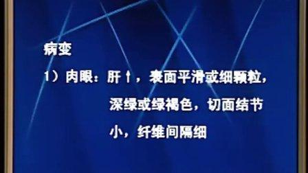 中国医科大学病理学网络课程34