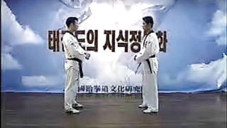 【侯韧杰 TKD 教学篇】之 跆拳道护身术