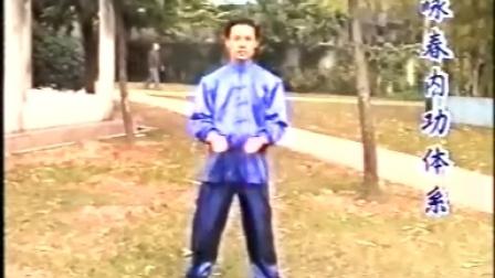 台湾版经典咏春拳
