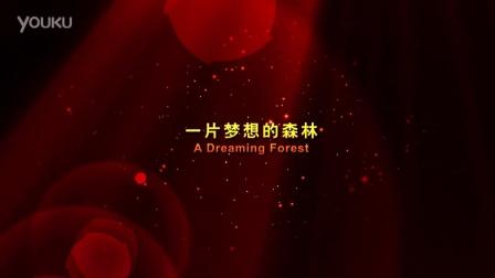 2012.11.06-新凯汽车辉煌的的梦想-汽车企业宣传片
