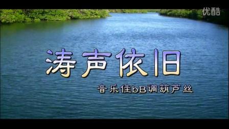 《涛声依旧》葫芦丝独奏  音乐佳葫芦丝名曲欣赏葫芦丝介绍