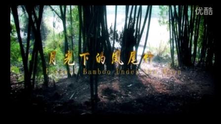 葫芦丝演奏《月光下的凤尾竹》音乐佳葫芦丝介绍欣赏