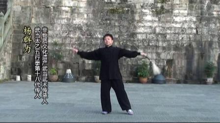 武当三丰太极剑(64式)