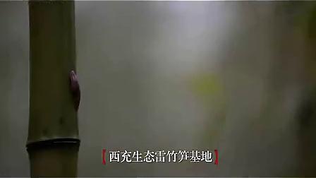 相思恋曲宋小金22