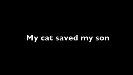 【猴姆独家】一只狗狗咬了小男孩,幸亏被猫咪赶走相救……