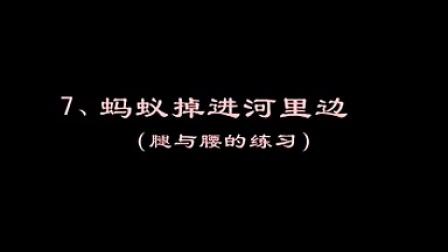 中國舞蹈家協會考級二級7螞蟻掉進河里邊標清
