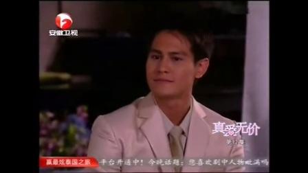 真爱无价国语版全集12中文版安徽卫视