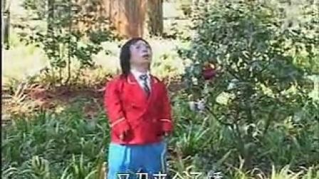 云南山歌(小矮人) 爹妈养我小矮人