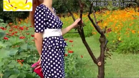 远东服装打板之波点连衣裙