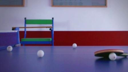 他把家改造成了乒乓球主题乐园 311