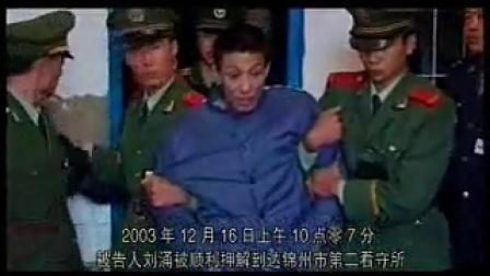 刑事侦破实录2005  02惩治刘涌