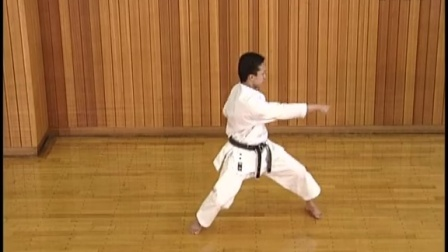 Basic Karatedo (Shotokan) 3