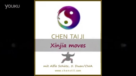 Chen Taiji 陳式太極拳 新架 Xinjia Moves