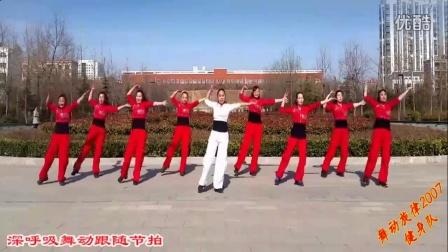 舞动旋律2007 合家欢 2016最新广场舞性感舞步广场舞视频大全
