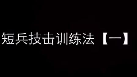 八极拳实战【短兵技击训练法一】