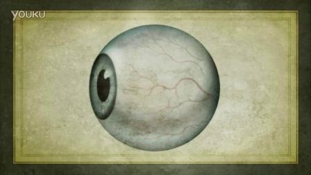 人类眼睛的进化历程
